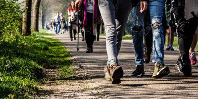 Participantes de la caminata anual recorren hacen juntos el camino (Caminata de Frans)