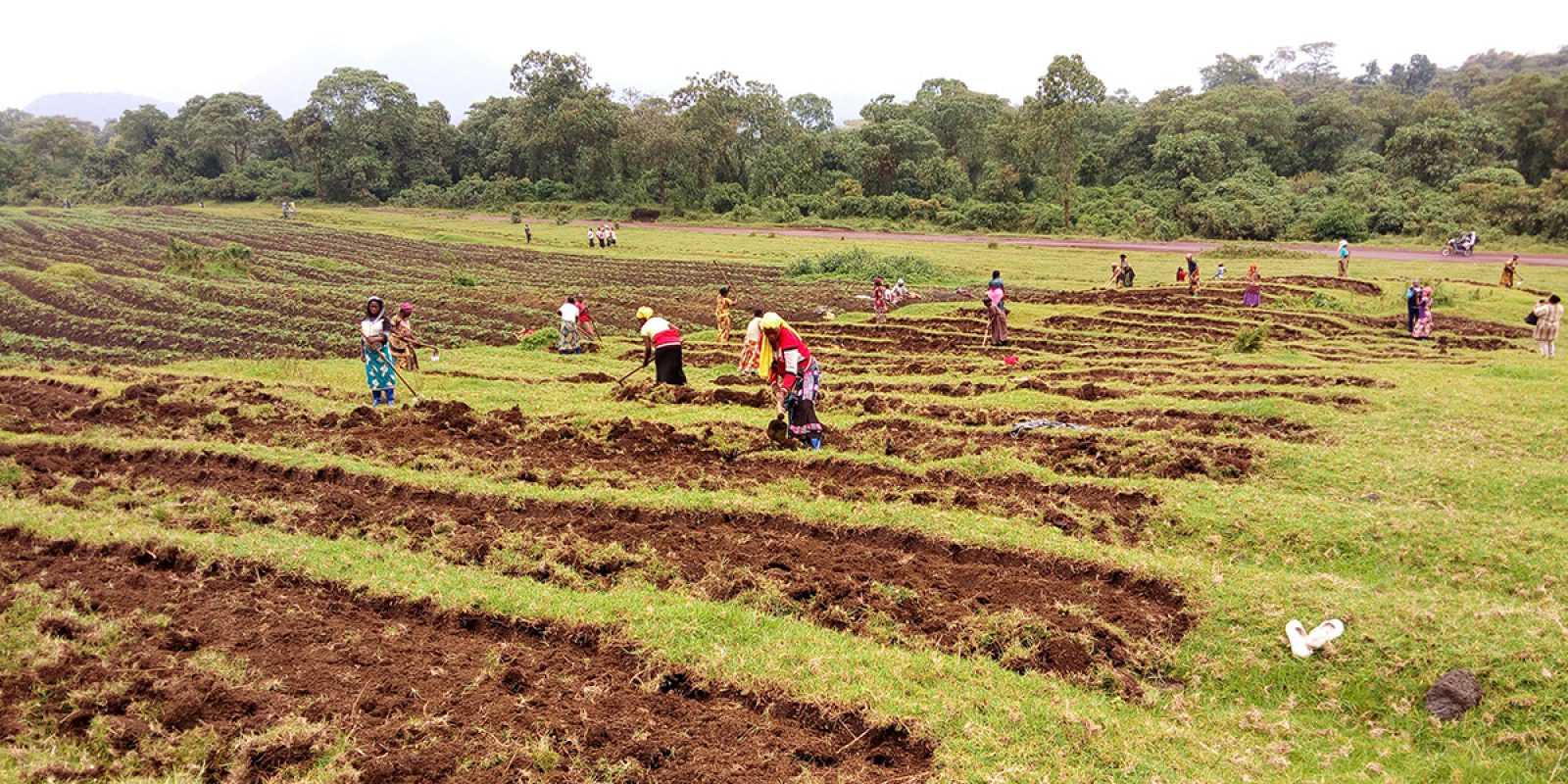 Training in agriculture fro displaced women in DRC
